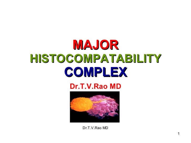 MAJOR  HISTOCOMPATABILITY  COMPLEX Dr.T.V.Rao MD Dr.T.V.Rao MD