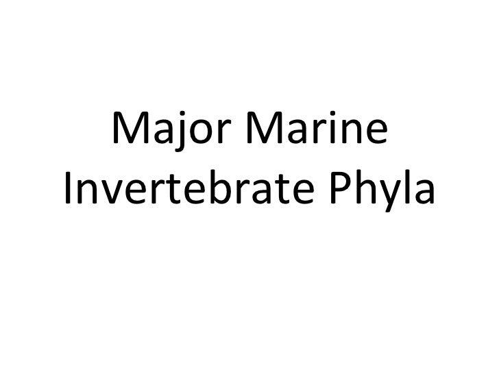 Major Marine Invertebrate Phyla