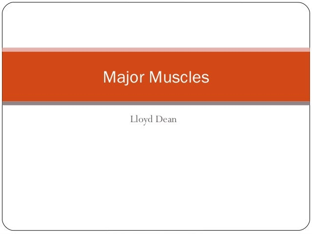 Major Muscles Lloyd Dean