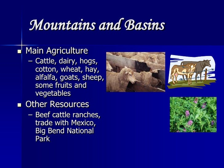 Natural Resources In Texas Mountains And Basins