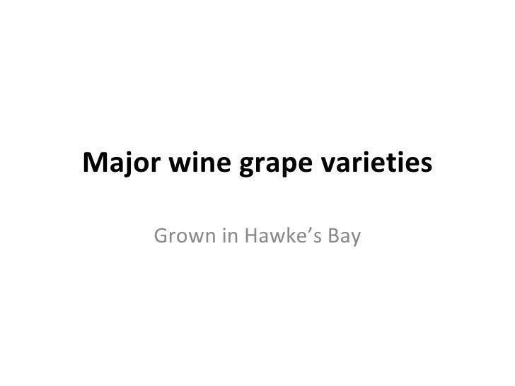 Major wine grape varieties Grown in Hawke's Bay