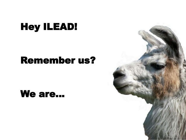 Hey ILEAD!Remember us?We are…