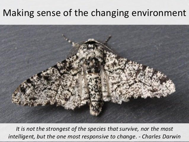 Make sense of the changing environment