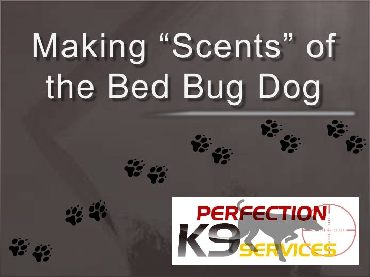 "2 Making ""Scents"" of the Bed Bug Dog"