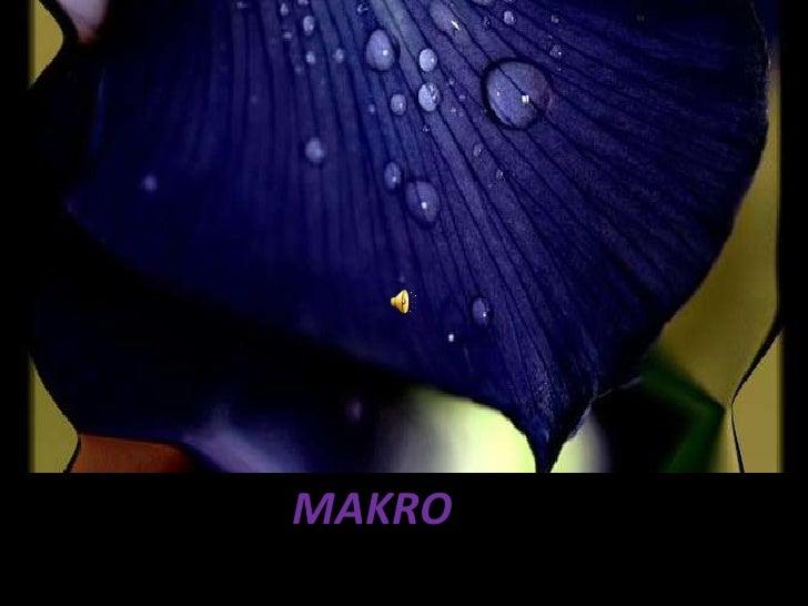 MAKRO<br />