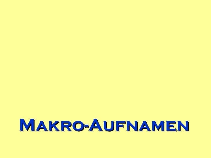 Makro Aufnamen