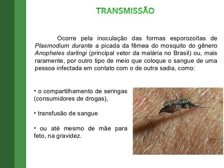 Doença de vermes de fita