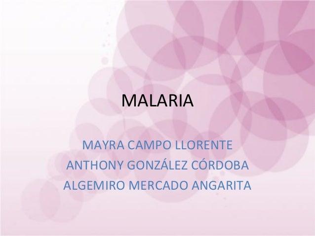 MALARIA   MAYRA CAMPO LLORENTEANTHONY GONZÁLEZ CÓRDOBAALGEMIRO MERCADO ANGARITA