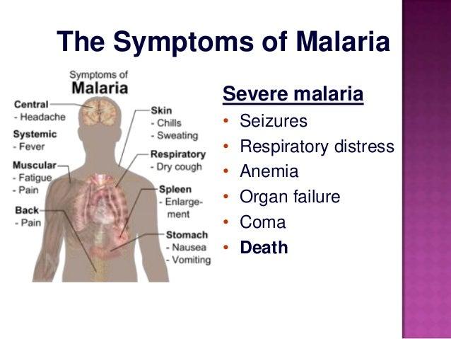 MALARIA CASE STUDY - d2cax41o7ahm5l.cloudfront.net