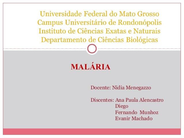 MALÁRIA Docente: Nidia Menegazzo Discentes: Ana Paula Alencastro Diego Fernando Munhoz Evanir Machado