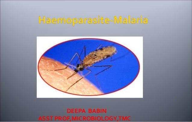 Malaria ppt deepa babin