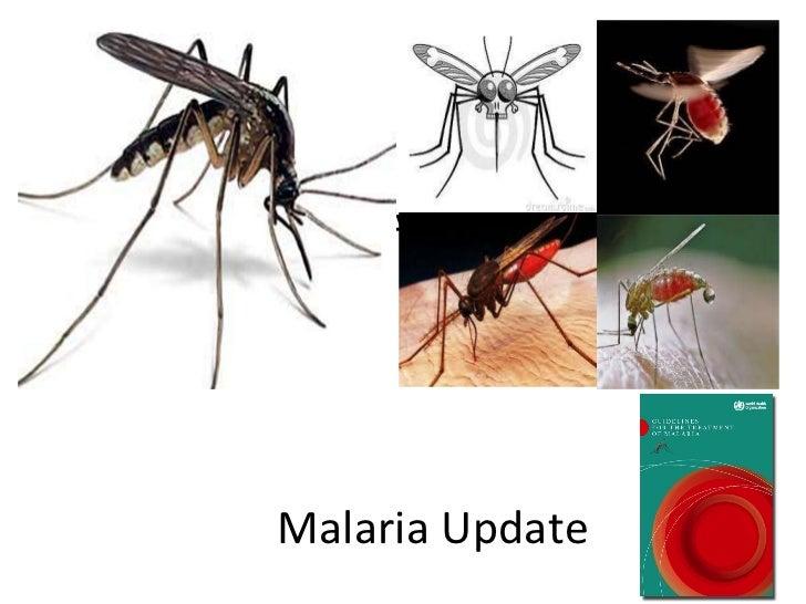 Malaria update