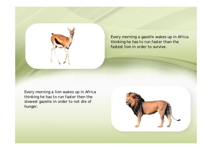 Every morning a gazelle wakes up in Africa                                           thinking he has to run faster than th...