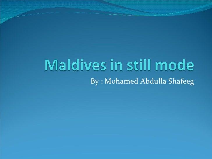 Maldives In Still Mode