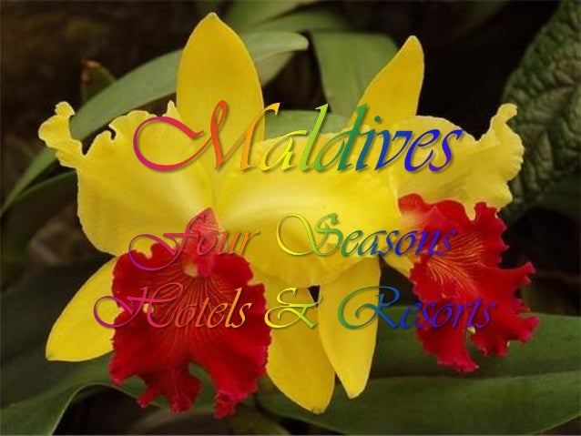 http://www.guidetomaldives.co.uk/2011/four-seasons-resort-maldives-at-kuda-huraa-a-retreat-for-all-seasons/ Picture: Maldi...