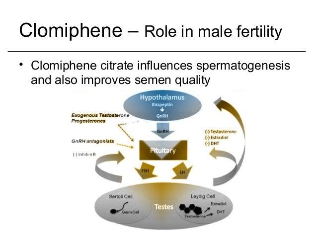 Clomiphene Citrate Fertility