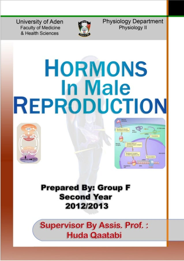 HORMONAL REGULATION IN MALE [ENDOCRINE SYSTEM]1MALE REPRODUCTIVE HORMONESThe reproductive hormonal axis in male consists o...