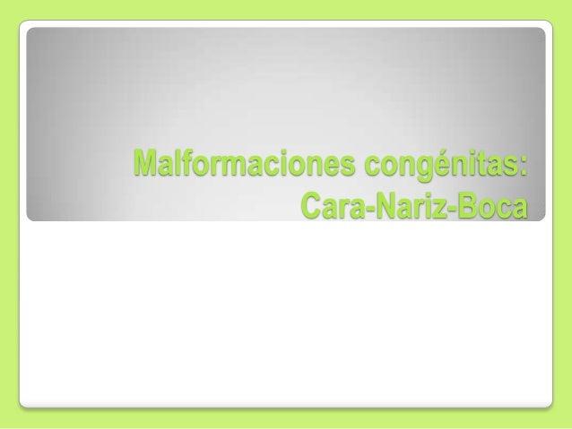 Malformaciones congénitas: Cara-Nariz-Boca