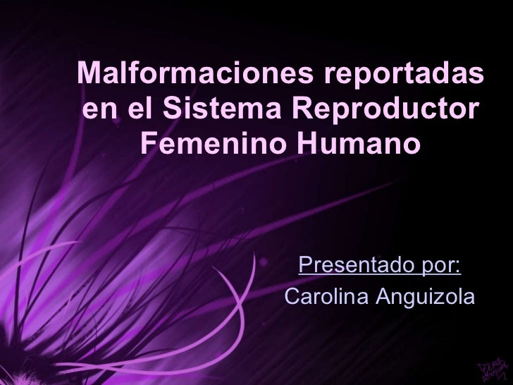 Malformaciones reportadas en el Sistema Reproductor Femenino Humano Presentado por: Carolina Anguizola