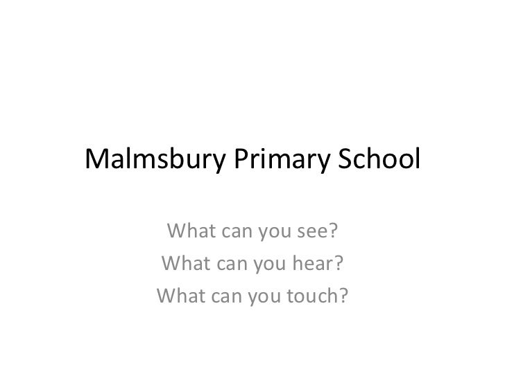 Malmsbury Primary School<br />What can you see?<br />What can you hear?<br />What can you touch?<br />