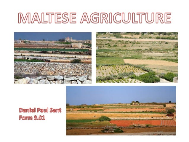 Maltese Agriculture by Daniel Paul Sant, 3.01