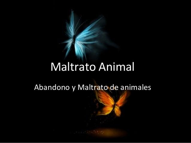 Maltrato Animal Abandono y Maltrato de animales