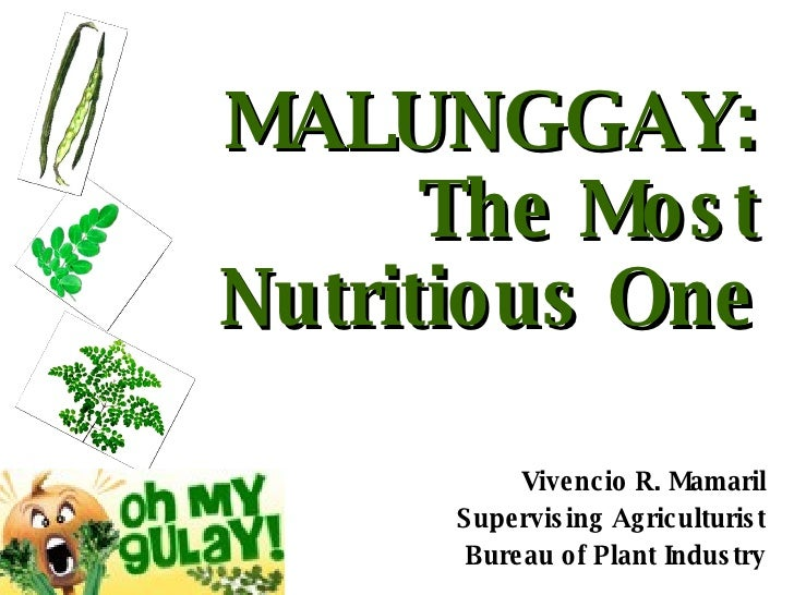 MALUNGGAY: The Most Nutritious One Vivencio R. Mamaril Supervising Agriculturist Bureau of Plant Industry