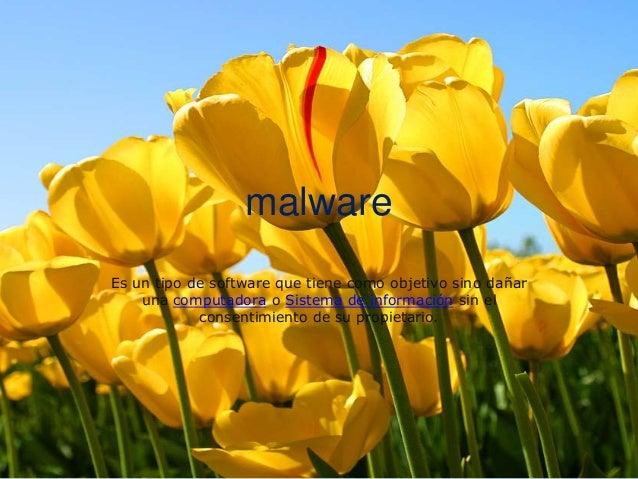 malwareEs un tipo de software que tiene como objetivo sino dañaruna computadora o Sistema de información sin elconsentimie...