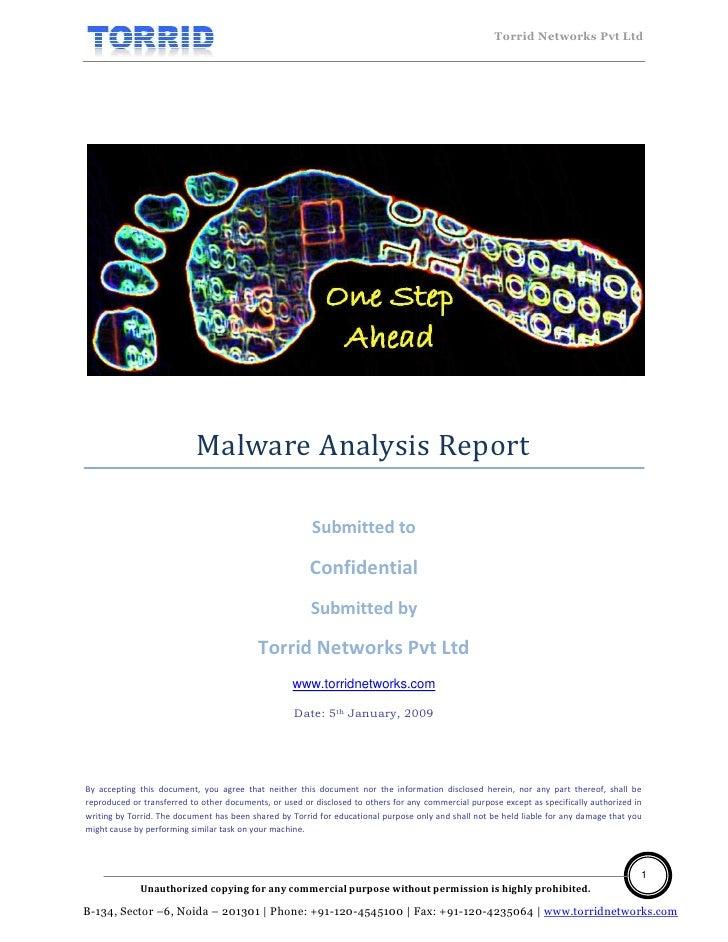Malware Analysis Report