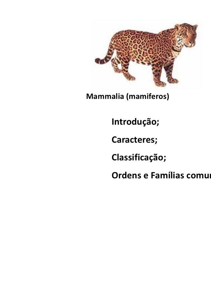 Mammalia (mamiferos)      Introdução;      Caracteres;      Classificação;      Ordens e Famílias comuns