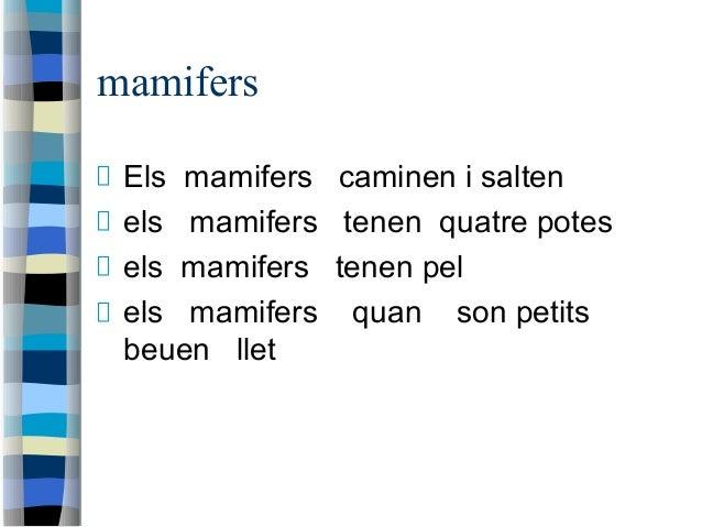 mamifers Els mamifers caminen i salten els mamifers tenen quatre potes els mamifers tenen pel els mamifers quan son petits...
