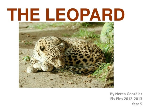 THE LEOPARDBy Nerea GonzálezEls Pins 2012-2013Year 5