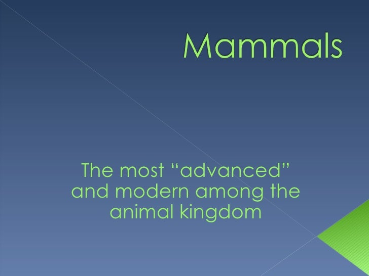 "The most ""advanced"" and modern among the animal kingdom"