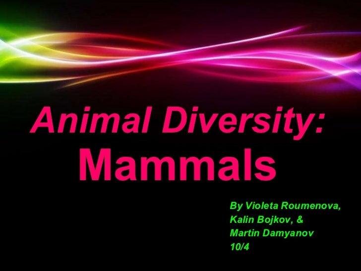 Animal Diversity:   Mammals By Violeta Roumenova, Kalin Bojkov, & Martin Damyanov 10/4