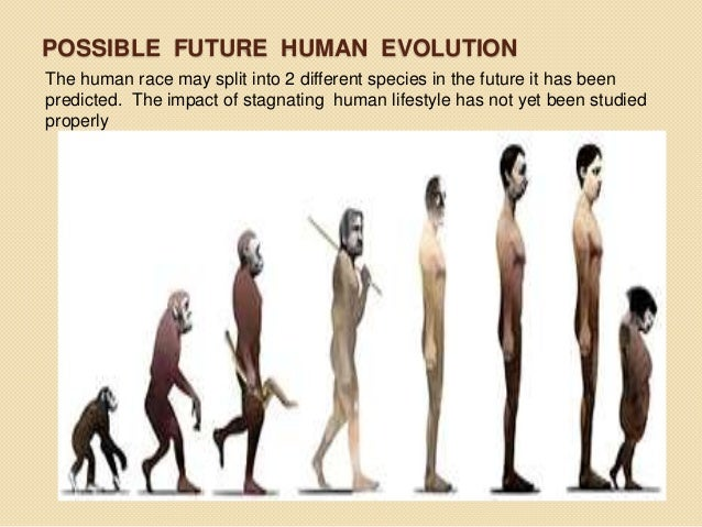 Future human evolution predictions