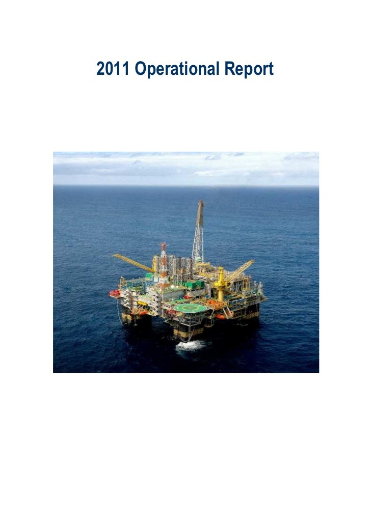 Management discussion report 2011