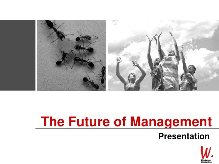 The Future of Management<br />Presentation<br />