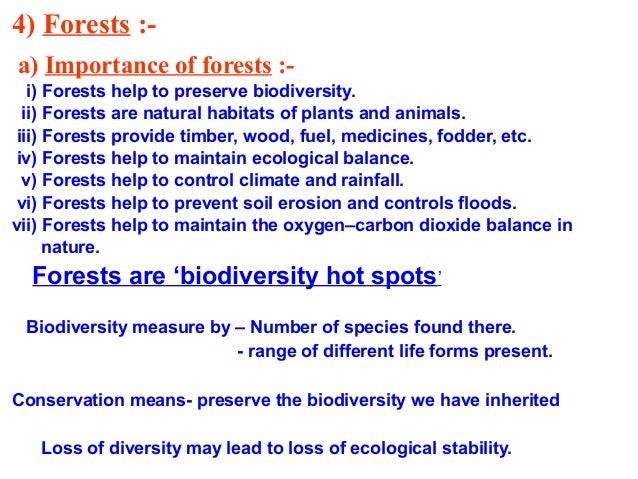 Essay on forest conservation