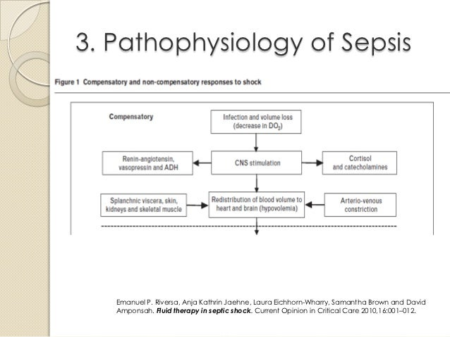 Read Your Body together with Blasenkrebs Was Nun Das Harnableitende System besides Cec additionally Treating Eczema furthermore Management Of Septic Shock. on ph diagram