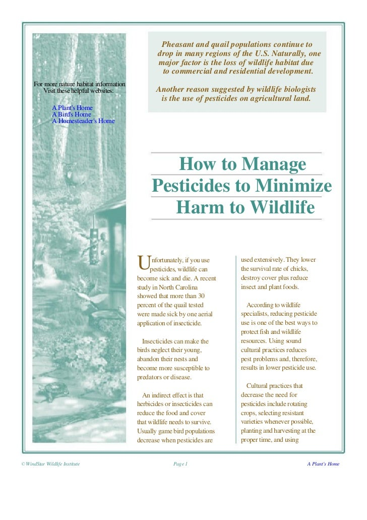 How to Manage Pesticides to Minimize Harm to Wildlife