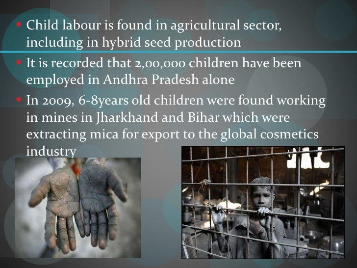 child labor and its effect to children essay Child labor is one of the biggest problems around the world because it puts children in danger it is basically utilizing that under aged.