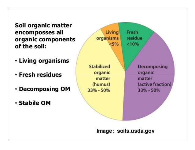 Managing organic matter for soil health and fertility for Four main components of soil
