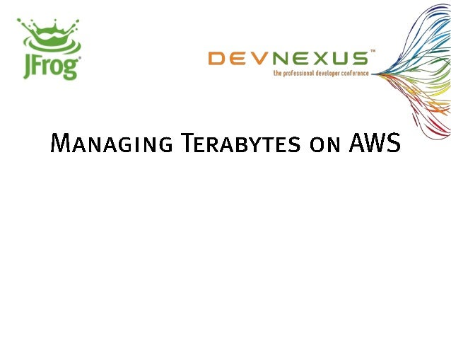 Managing terabytes on aws