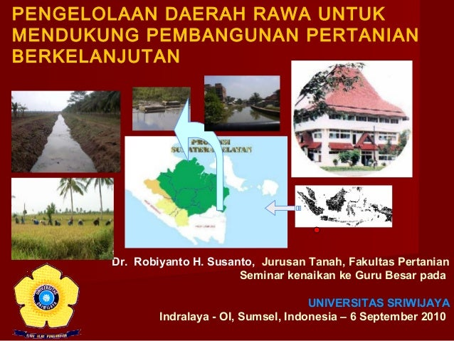 PENGELOLAAN DAERAH RAWA UNTUK MENDUKUNG PEMBANGUNAN PERTANIAN BERKELANJUTAN  Dr. Robiyanto H. Susanto, Jurusan Tanah, Faku...
