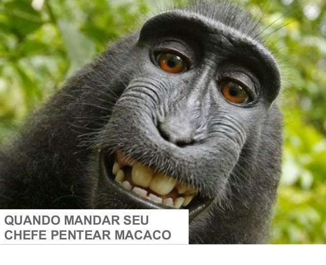 QUANDO MANDAR SEU CHEFE PENTEAR MACACO