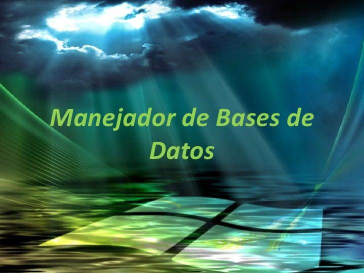 Manejador de Bases de Datos<br />