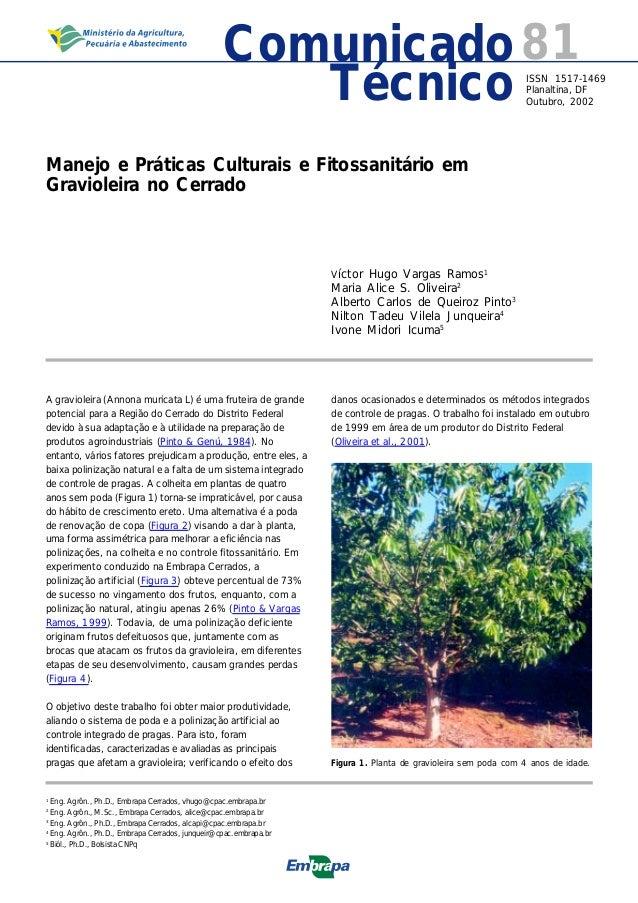81ISSN 1517-1469 Planaltina, DF Outubro, 2002Técnico Comunicado Manejo e Práticas Culturais e Fitossanitário em Gravioleir...