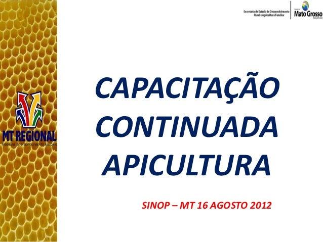 CAPACITAÇÃOCONTINUADAAPICULTURA  SINOP – MT 16 AGOSTO 2012