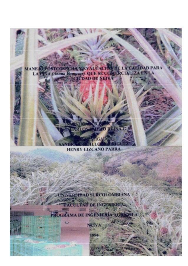 TABLA DE CONTENIDO  Pág. INTRODUCCIÓN  1  1.  5  REVISIÓN DE LITERATURA  1.1.  GENERALIDADES  5  1.1.1.  Origen  5  1.1.2....
