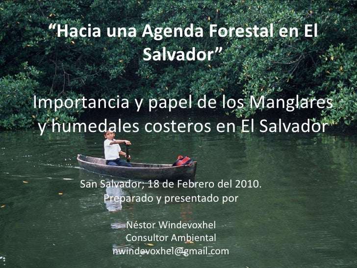 """""""Hacia una Agenda Forestal en El Salvador"""" Importancia y papel de los Manglares y humedales costeros en El Salvador<br />S..."""